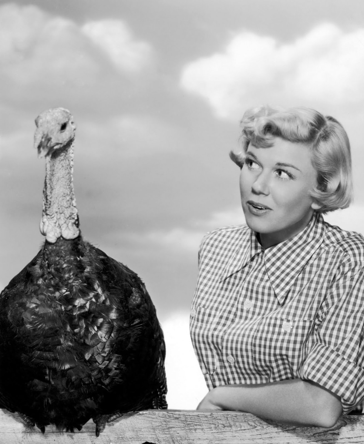 Doris Day Thanksgiving